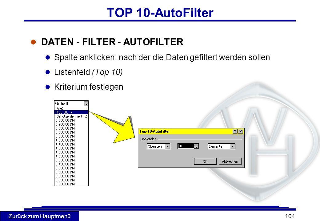 TOP 10-AutoFilter DATEN - FILTER - AUTOFILTER