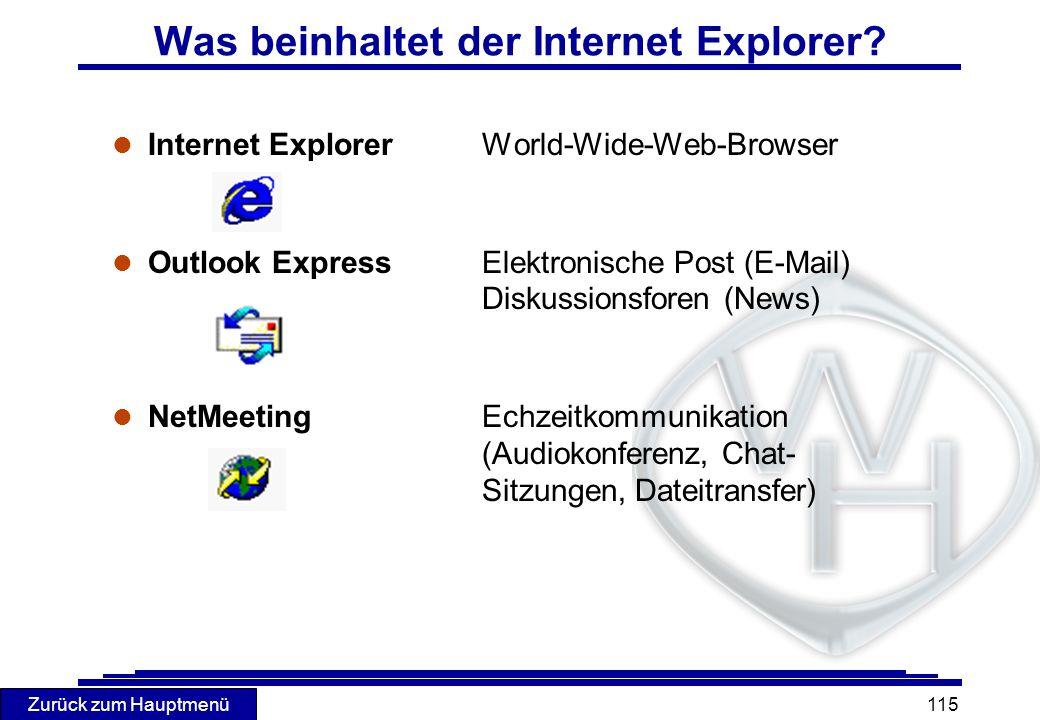 Was beinhaltet der Internet Explorer
