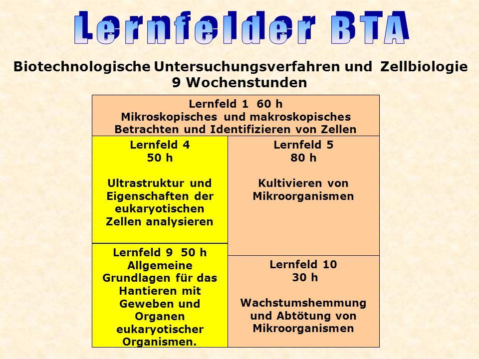 Lernfelder BTA Biotechnologische Untersuchungsverfahren und