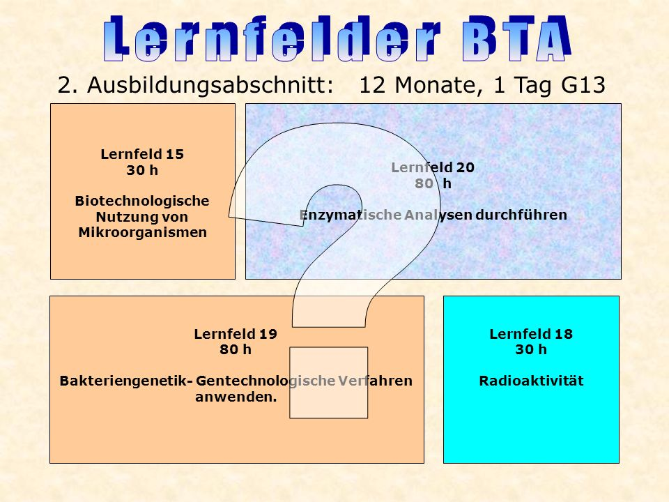 Lernfelder BTA 2. Ausbildungsabschnitt: 12 Monate, 1 Tag G13
