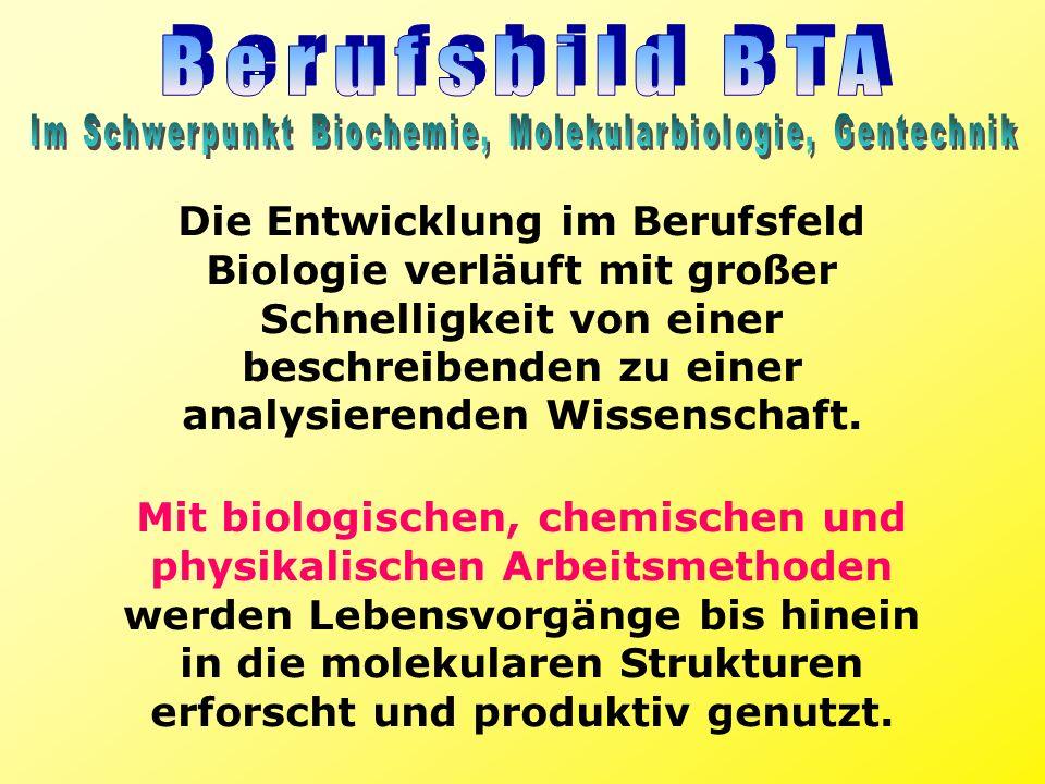 Im Schwerpunkt Biochemie, Molekularbiologie, Gentechnik