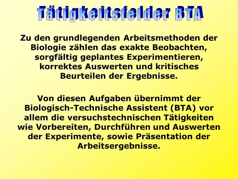 Tätigkeitsfelder BTA