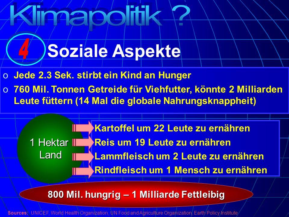 800 Mil. hungrig – 1 Milliarde Fettleibig