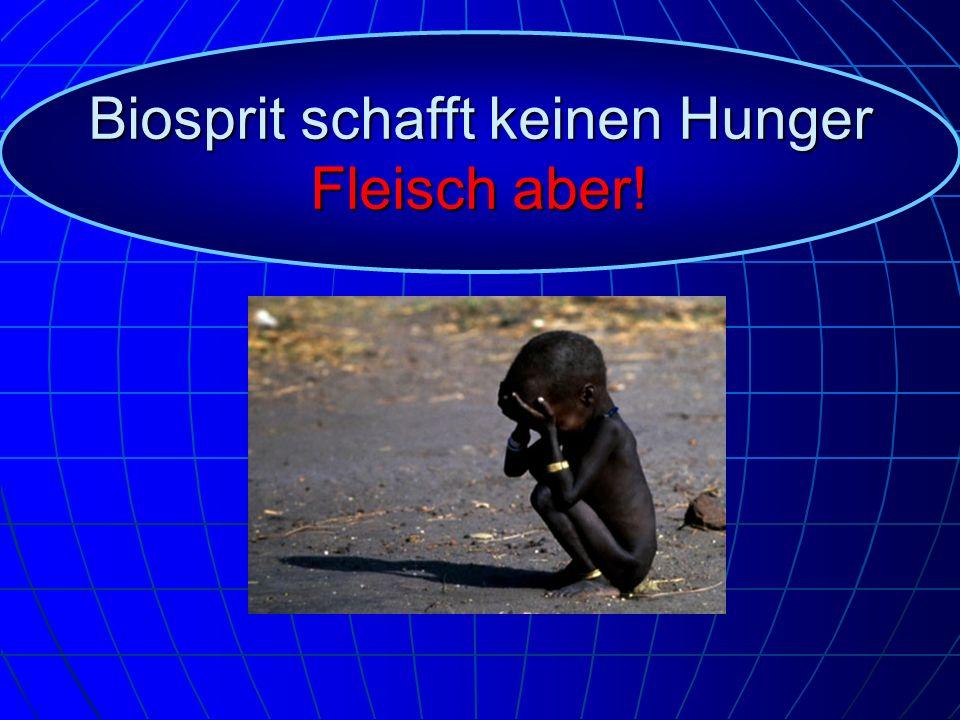 Biosprit schafft keinen Hunger Fleisch aber!