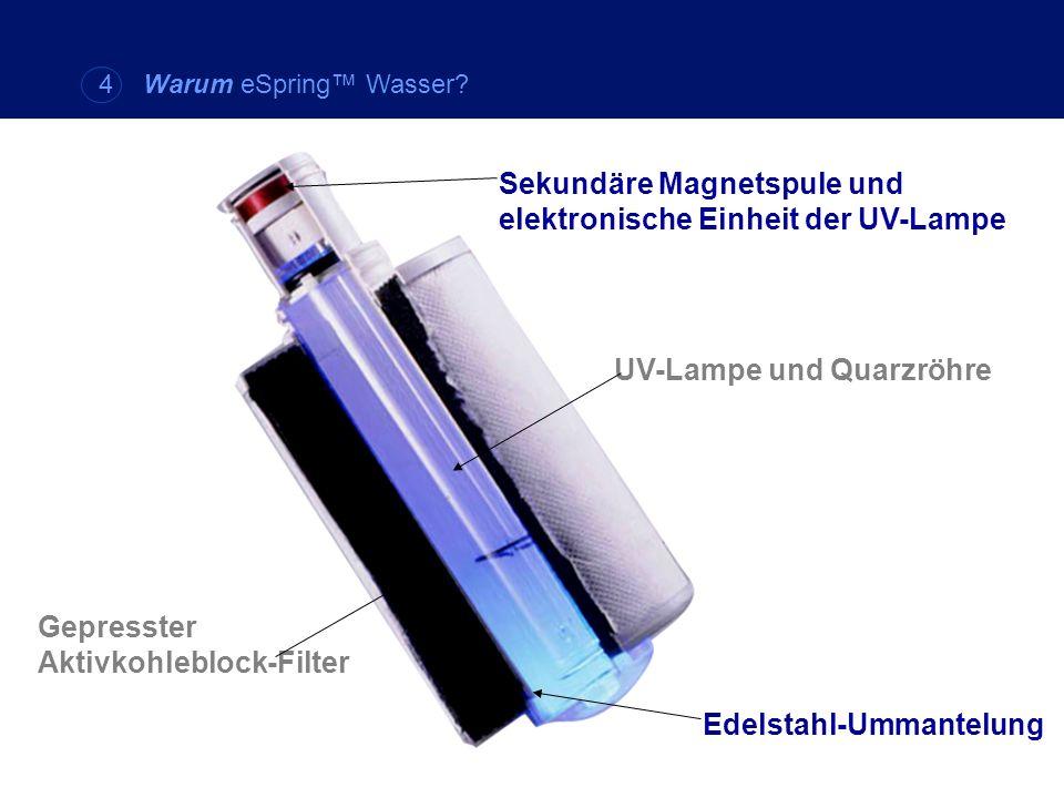 Sekundäre Magnetspule und elektronische Einheit der UV-Lampe