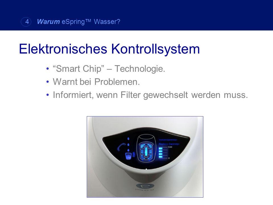 Elektronisches Kontrollsystem