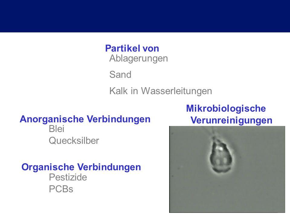 Mikrobiologische Verunreinigungen Organische Verbindungen