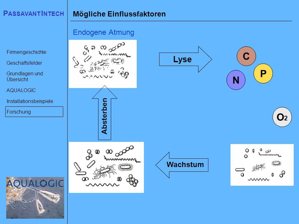 C P N O2 Lyse Mögliche Einflussfaktoren Endogene Atmung Absterben
