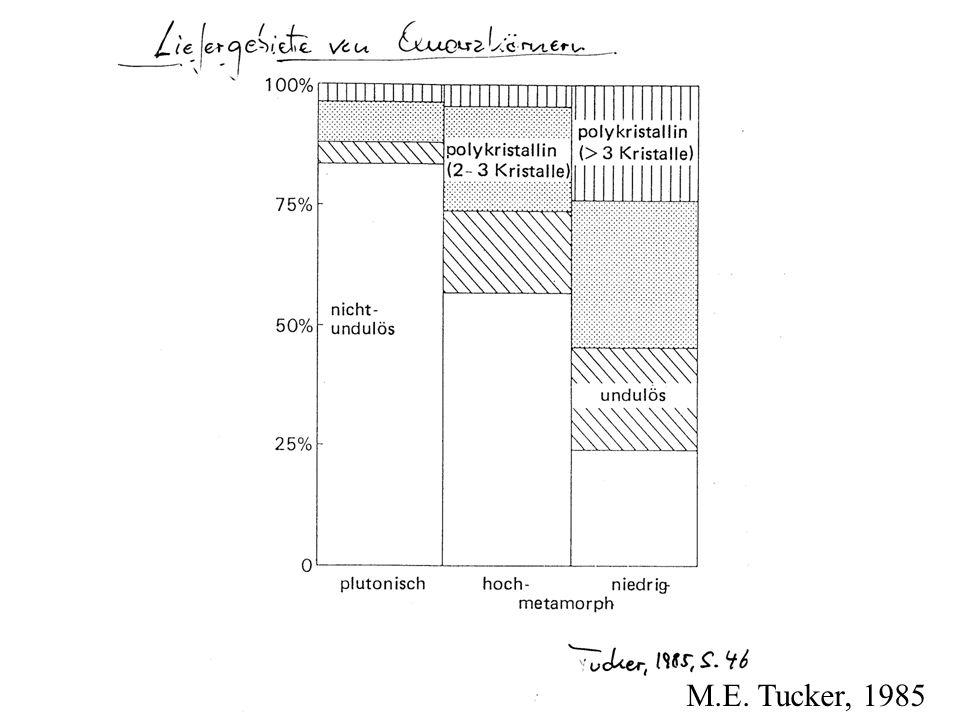 M.E. Tucker, 1985