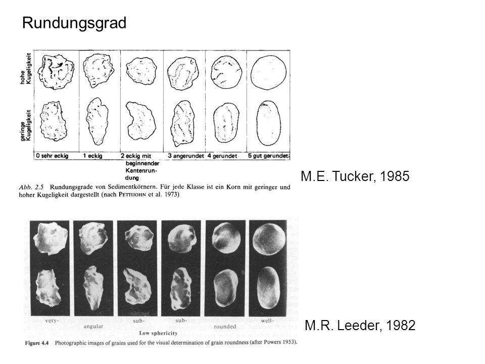 Rundungsgrad M.E. Tucker, 1985 M.R. Leeder, 1982