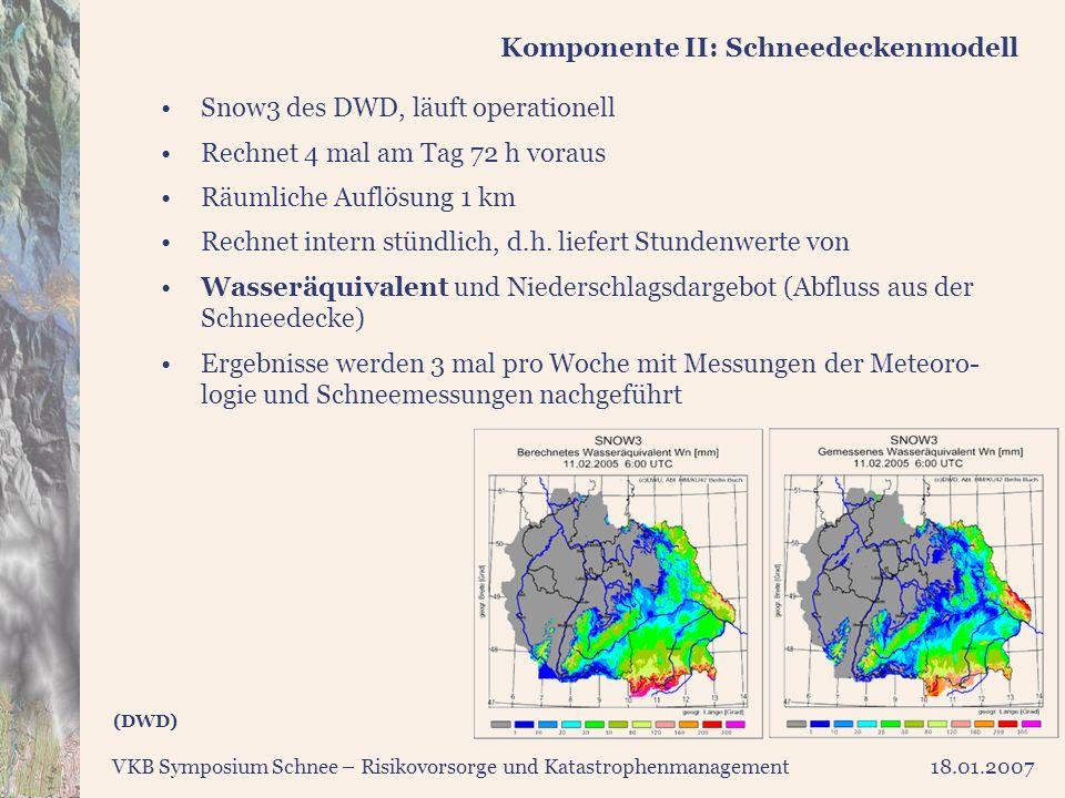 Komponente II: Schneedeckenmodell