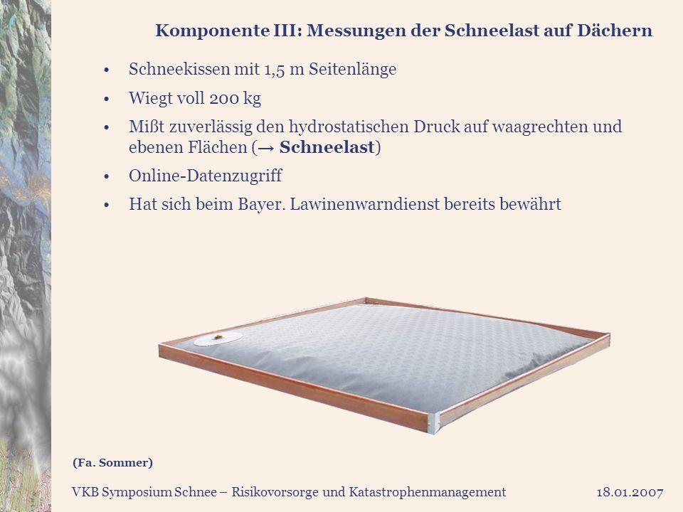 Komponente III: Messungen der Schneelast auf Dächern