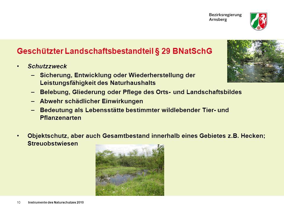 Geschützter Landschaftsbestandteil § 29 BNatSchG