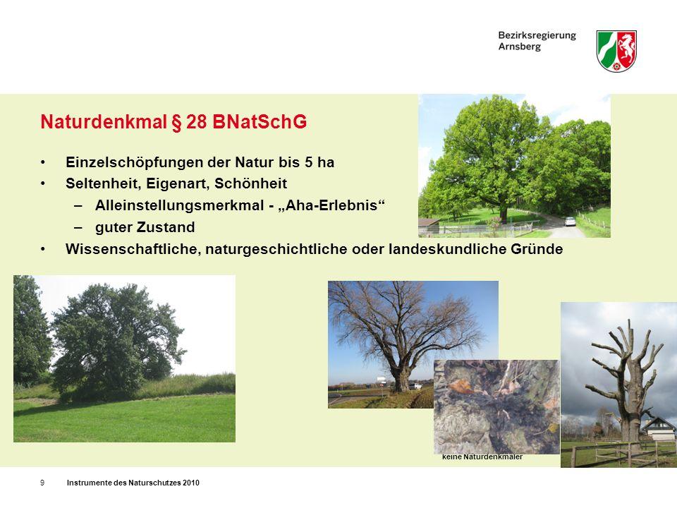Naturdenkmal § 28 BNatSchG