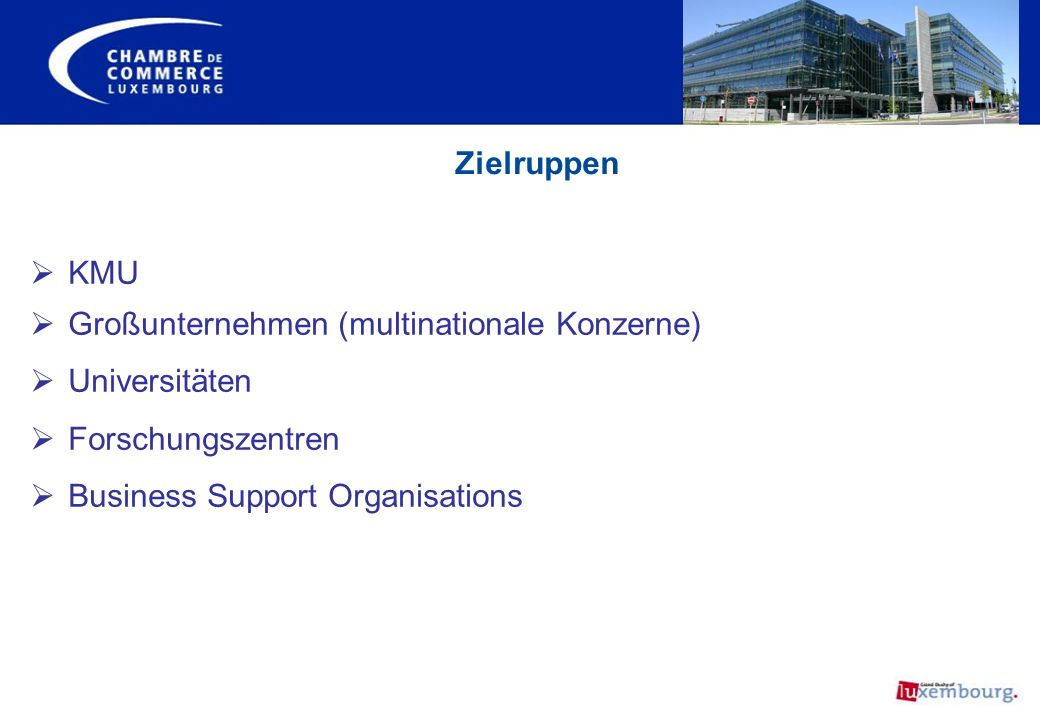 Großunternehmen (multinationale Konzerne) Universitäten