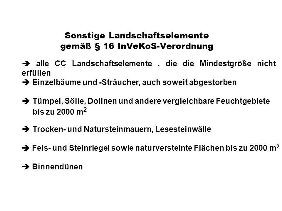 Sonstige Landschaftselemente gemäß § 16 InVeKoS-Verordnung