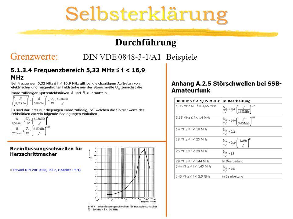 Selbsterklärung Durchführung Grenzwerte: DIN VDE 0848-3-1/A1 Beispiele