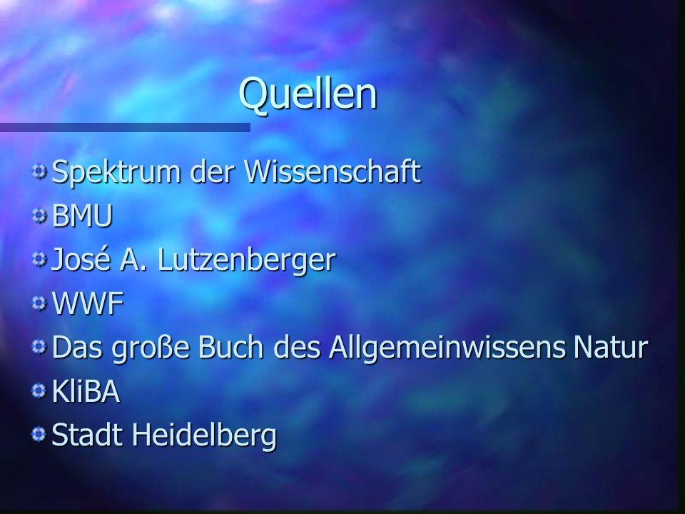 Quellen Spektrum der Wissenschaft BMU José A. Lutzenberger WWF