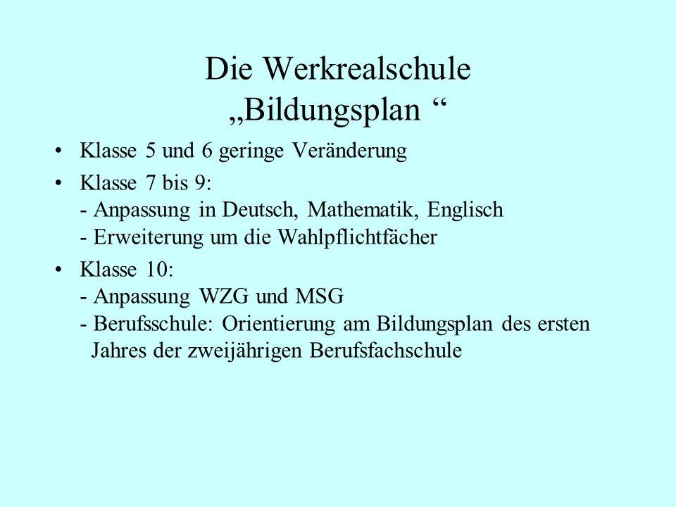 """Die Werkrealschule """"Bildungsplan"""