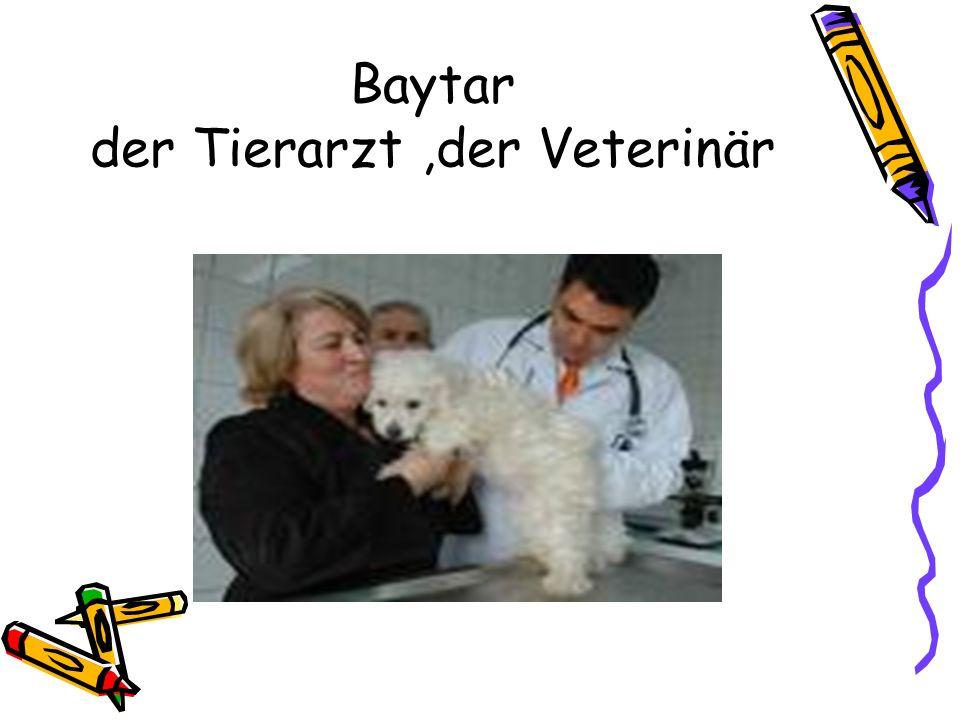 Baytar der Tierarzt ,der Veterinär