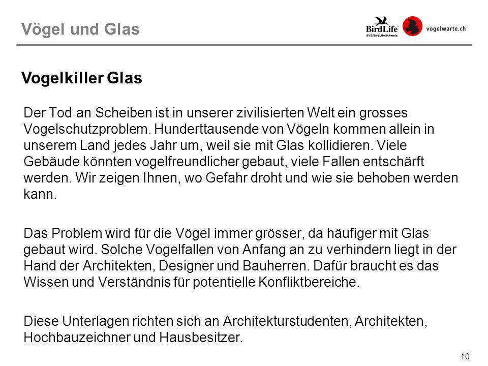 Vögel und Glas Vogelkiller Glas