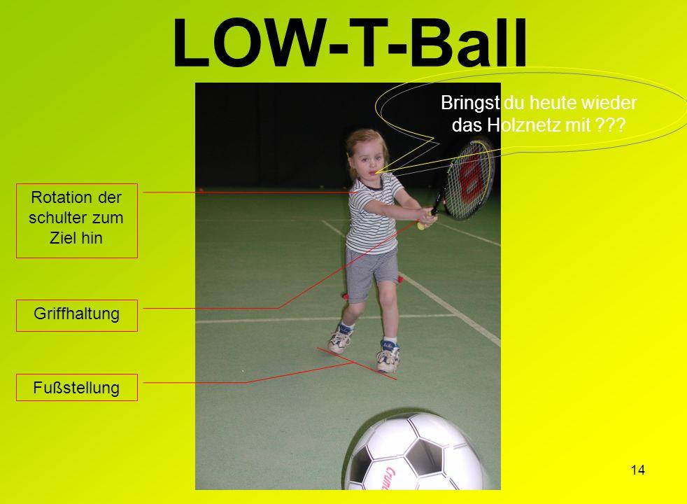 LOW-T-Ball Bringst du heute wieder das Holznetz mit