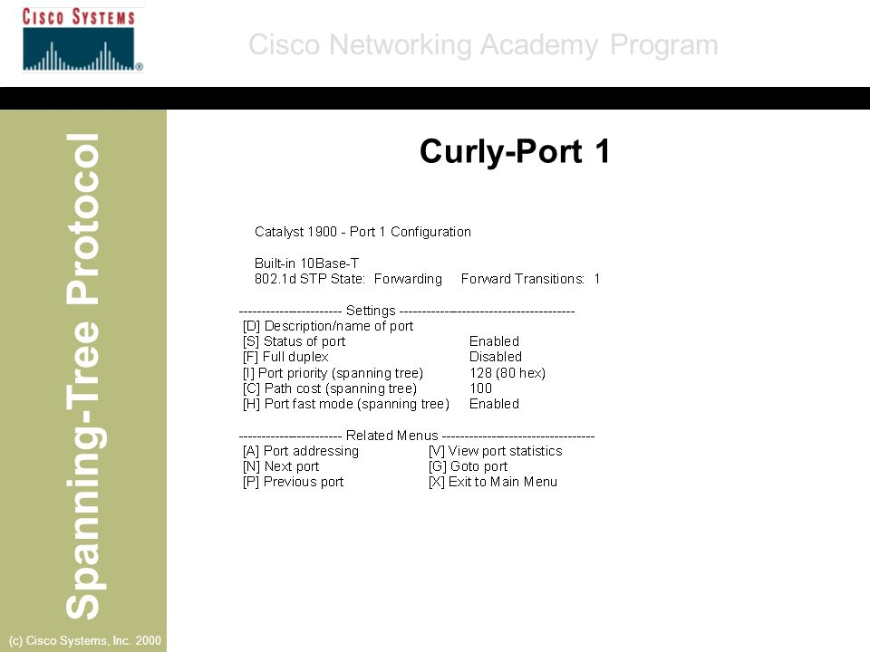 Curly-Port 1
