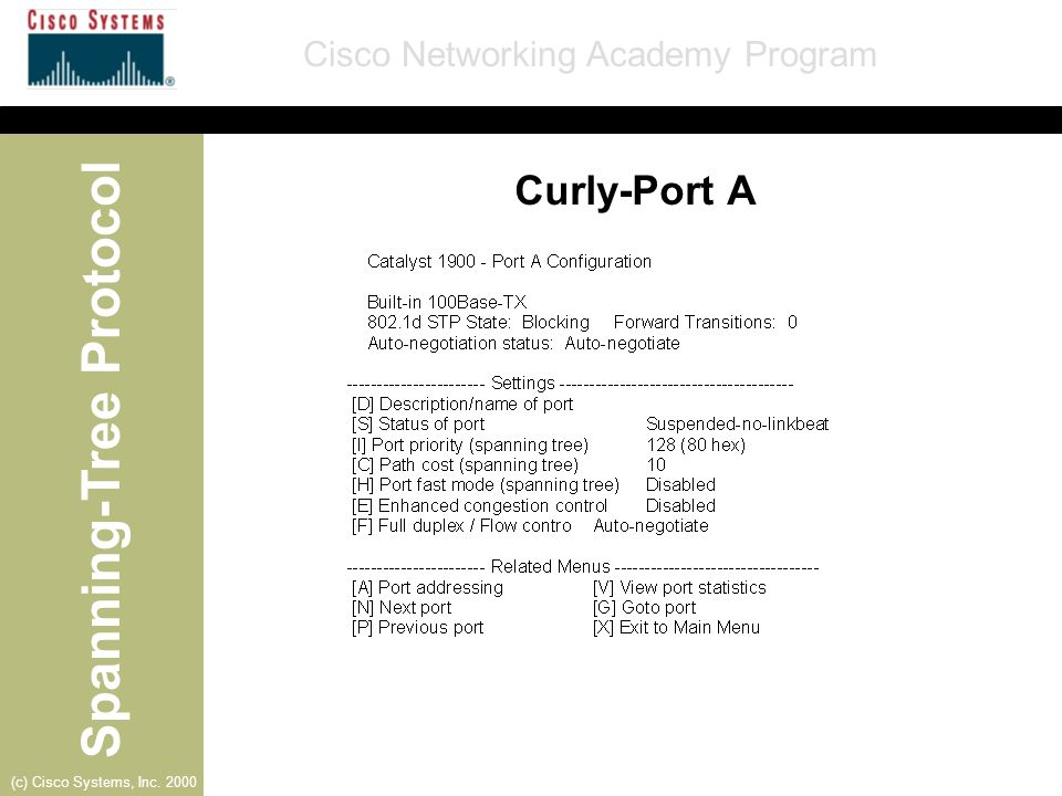 Curly-Port A