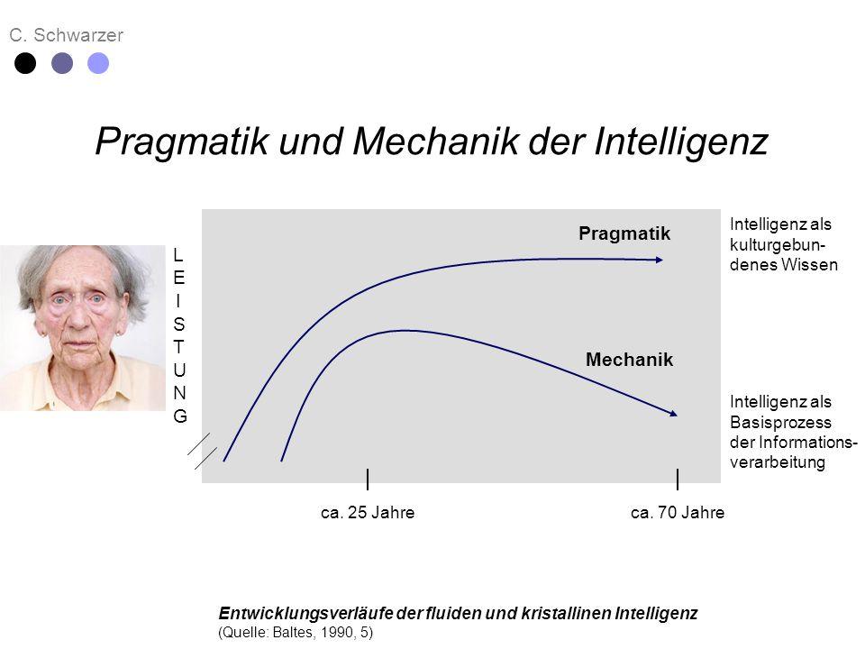 Pragmatik und Mechanik der Intelligenz