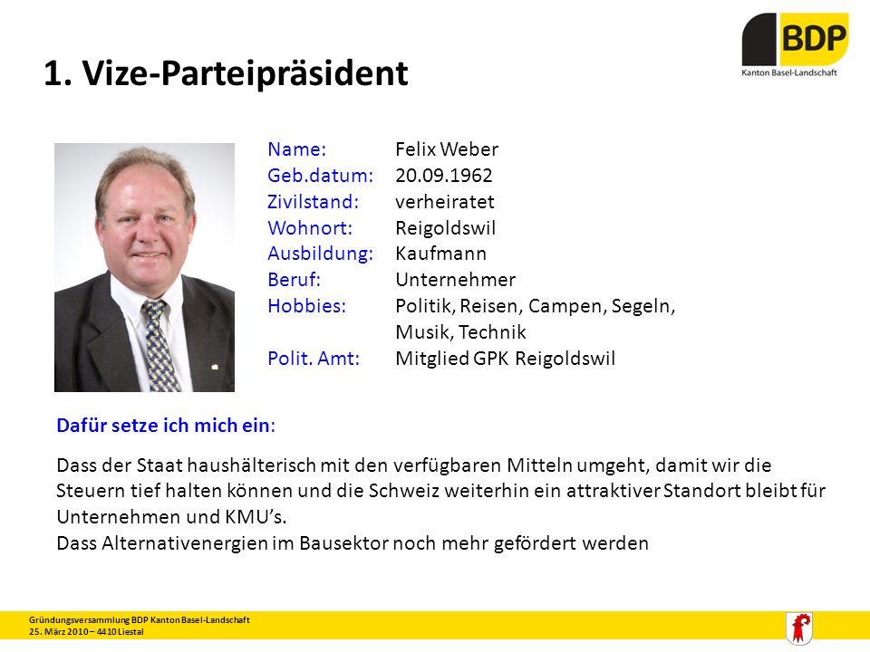 1. Vize-Parteipräsident