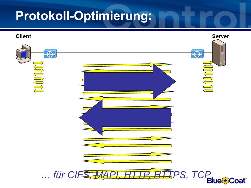 Protokoll-Optimierung: