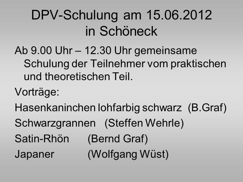 DPV-Schulung am 15.06.2012 in Schöneck