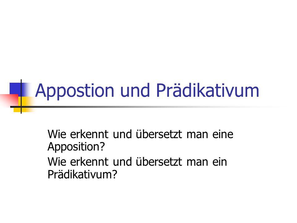 Appostion und Prädikativum