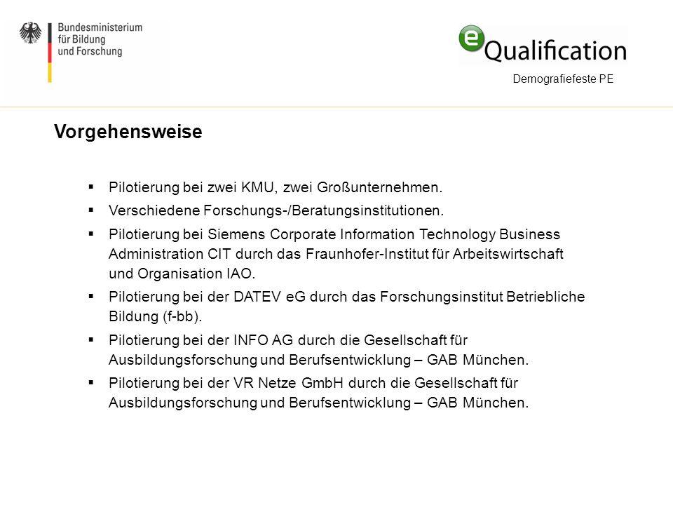 Vorgehensweise Pilotierung bei zwei KMU, zwei Großunternehmen.