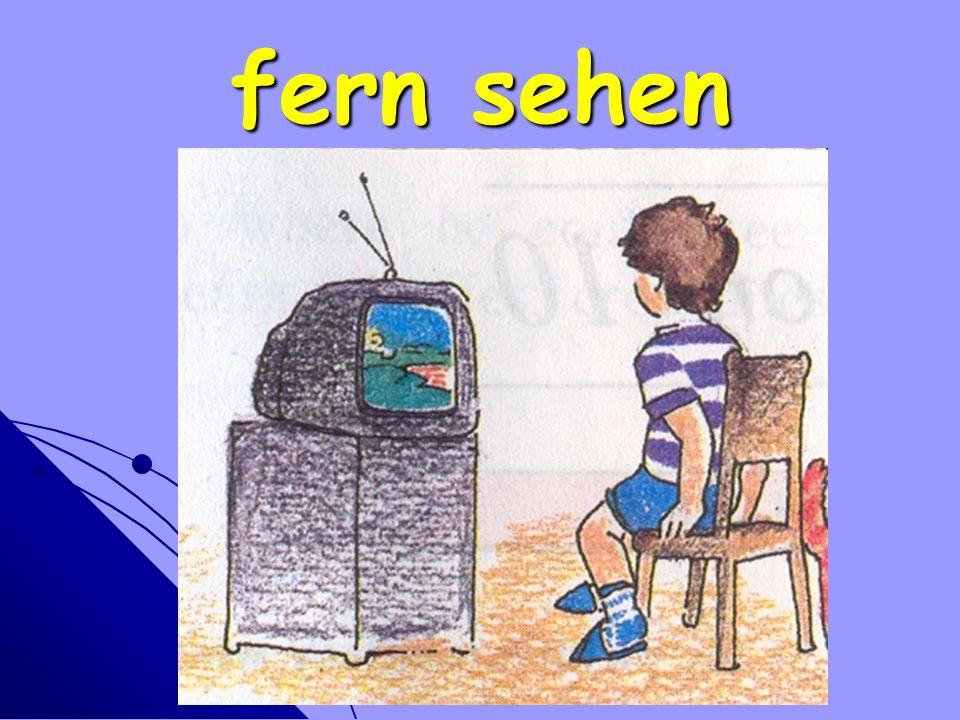 fern sehen