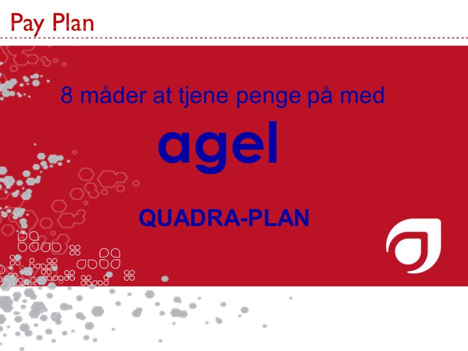 agel Pay Plan Pay Plan 8 måder at tjene penge på med