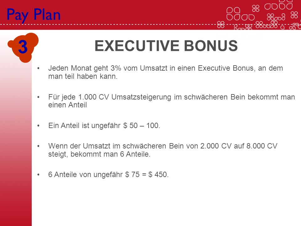 3 Pay Plan Executive Bonus EXECUTIVE BONUS