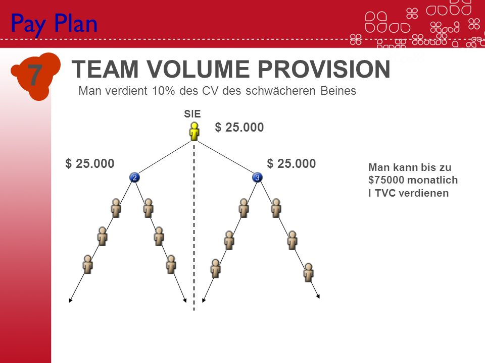 7 Pay Plan TEAM VOLUME PROVISION $ 25.000 $ 25.000 $ 25.000 SIE