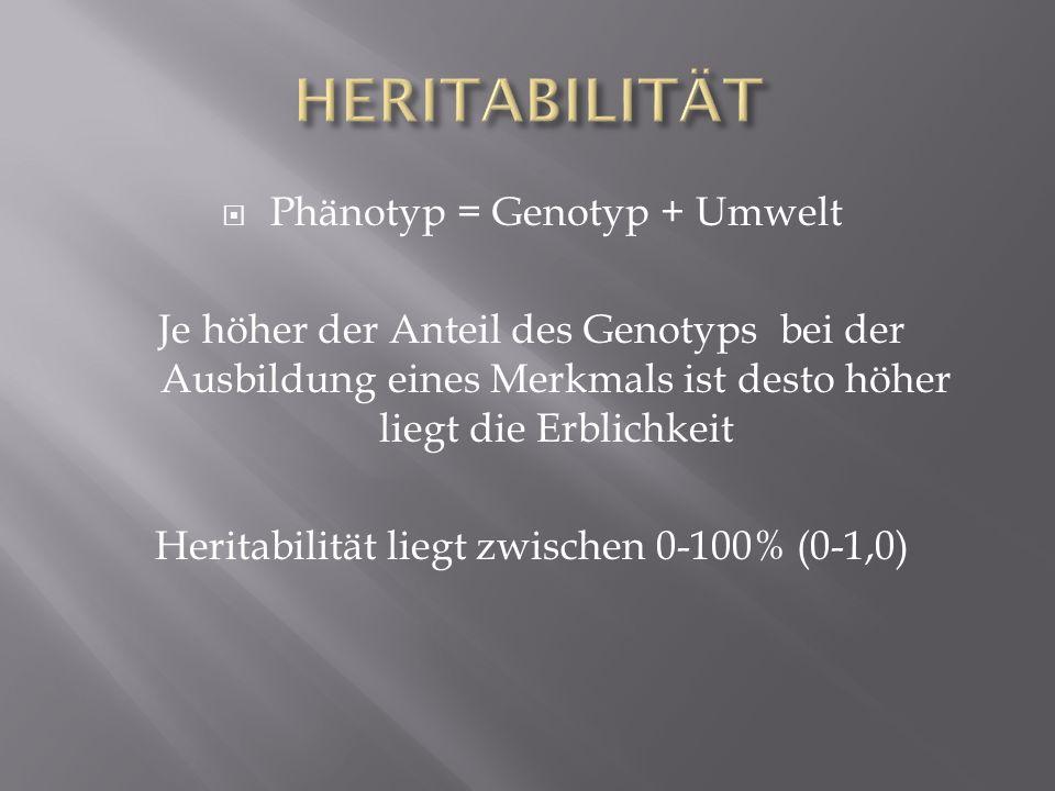 HERITABILITÄT Phänotyp = Genotyp + Umwelt