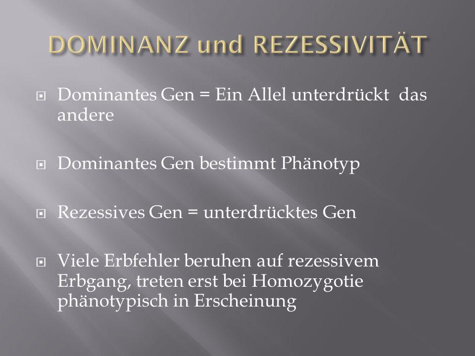 DOMINANZ und REZESSIVITÄT