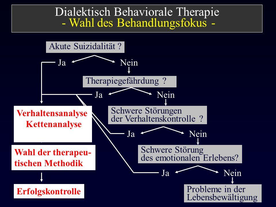 Dialektisch Behaviorale Therapie - Wahl des Behandlungsfokus -