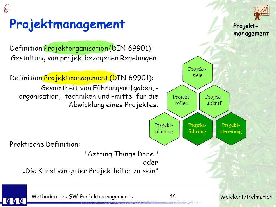 Projektmanagement Definition Projektorganisation (DIN 69901):