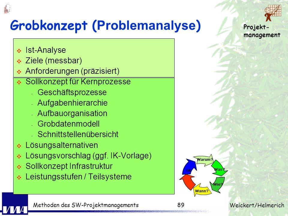Grobkonzept (Problemanalyse)