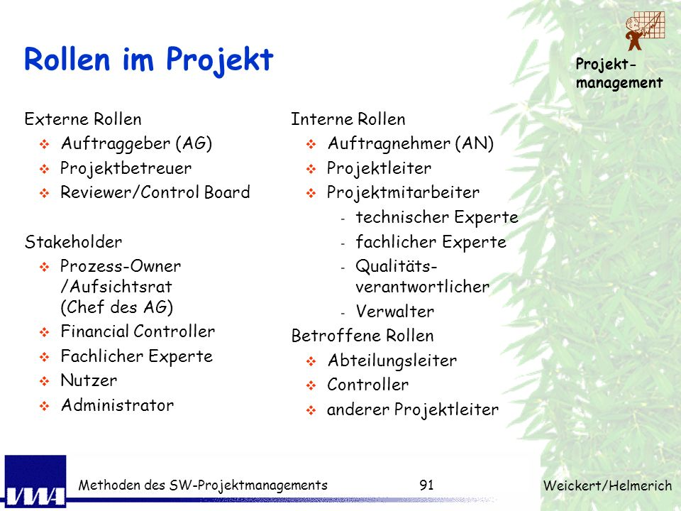 Rollen im Projekt Externe Rollen Auftraggeber (AG) Projektbetreuer