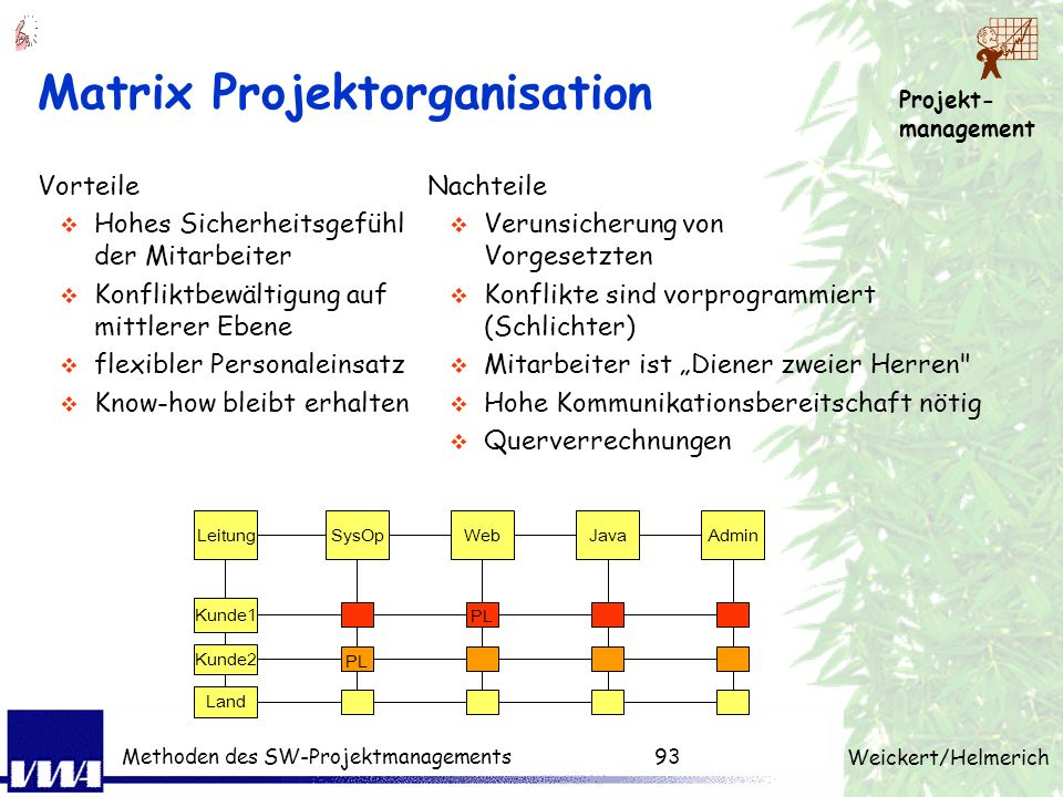 Matrix Projektorganisation