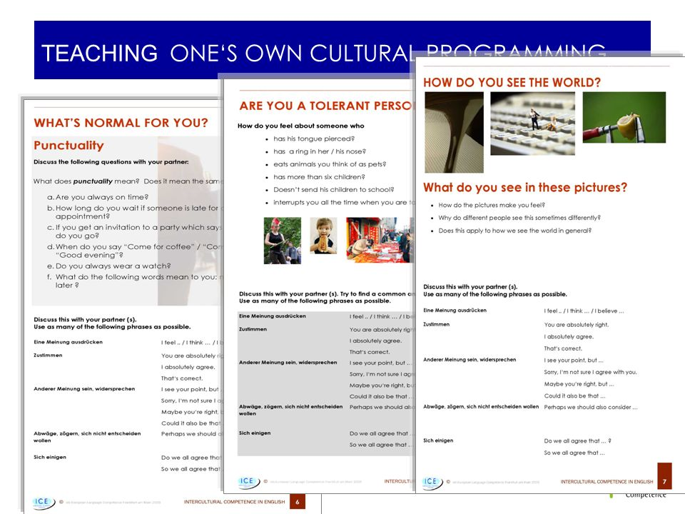 TEACHING ONE'S OWN CULTURAL PROGRAMMING