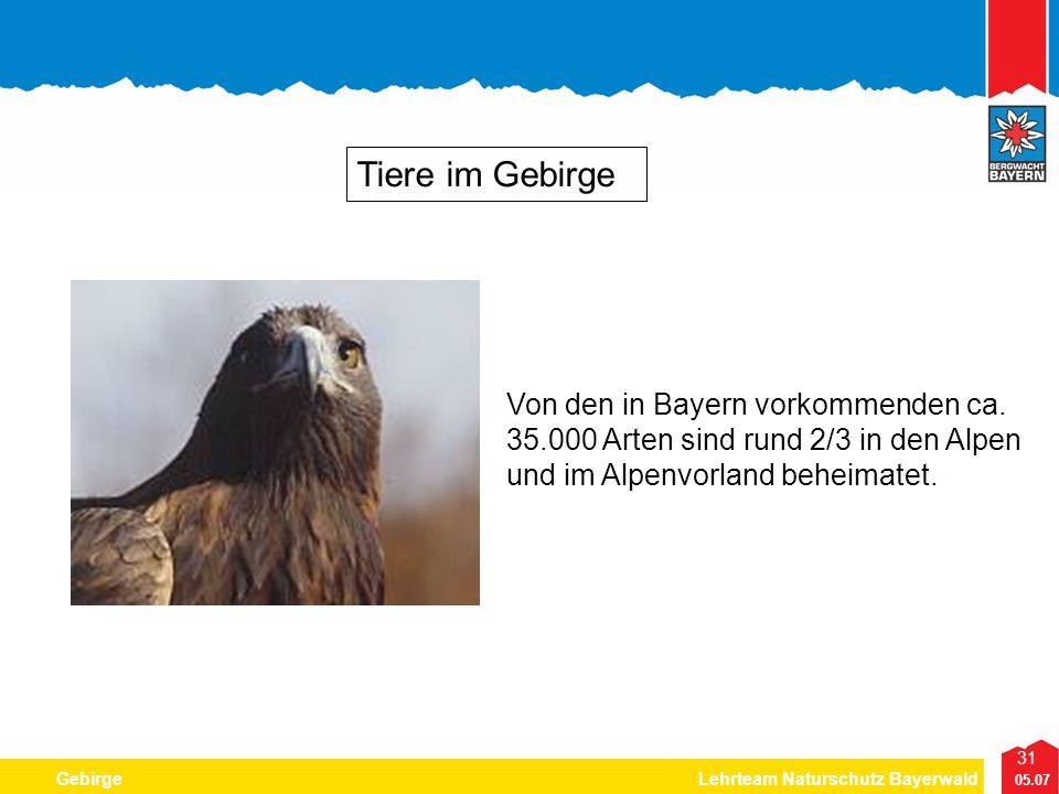 Tiere im Gebirge Von den in Bayern vorkommenden ca.