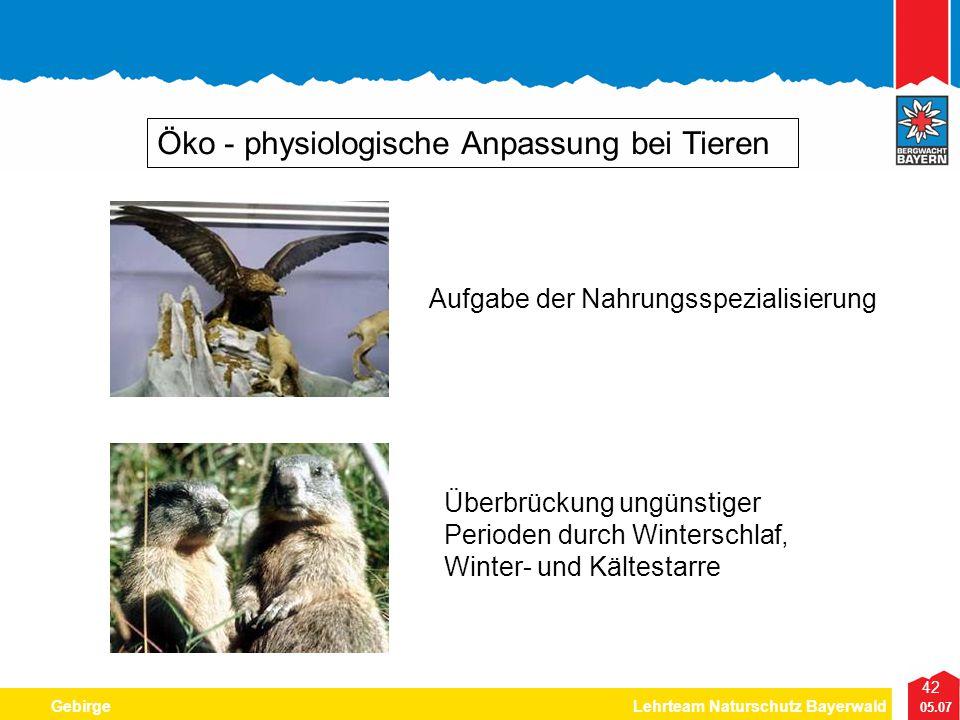 Niedlich Teich Tiere Färbung Seite Bilder - Beispiel Anschreiben für ...