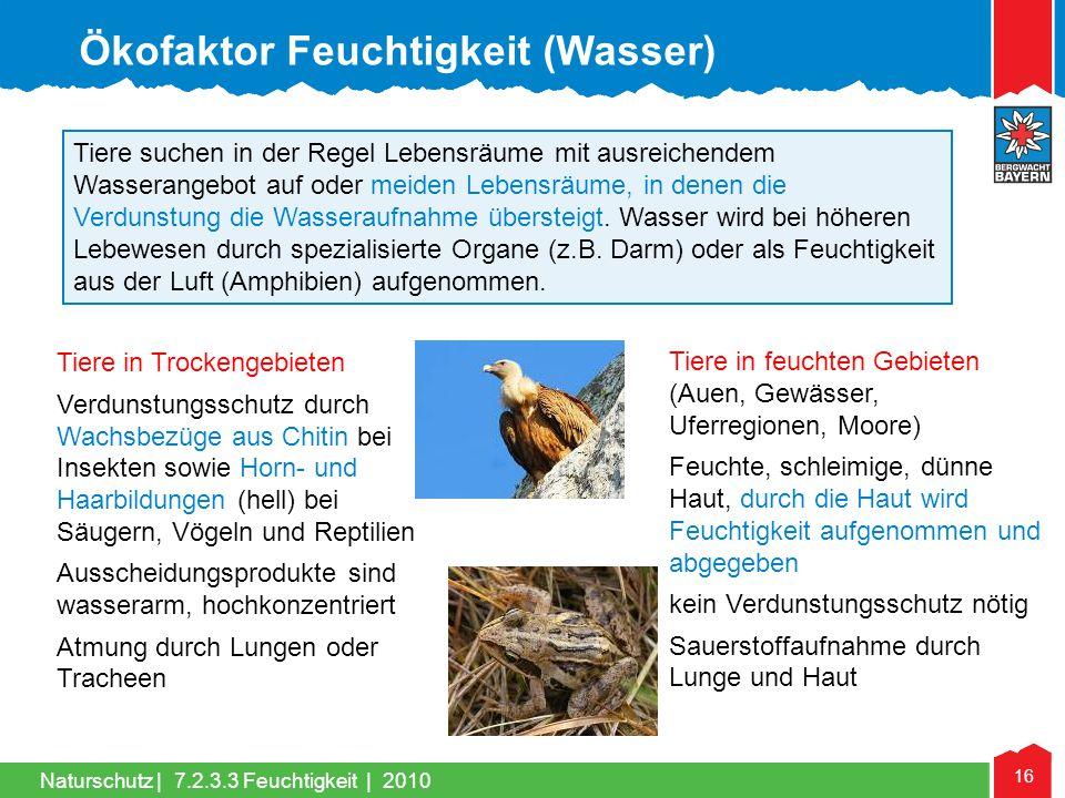 Ökofaktor Feuchtigkeit (Wasser)