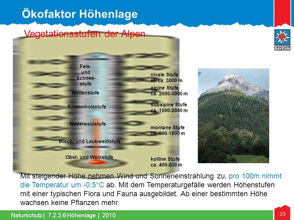 Ökofaktor Höhenlage Vegetationsstufen der Alpen